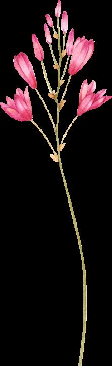 flower alt text